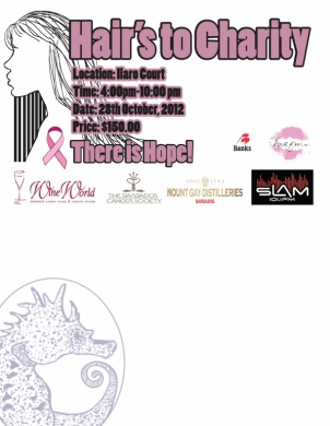 Hairs To Charity Fundraiser