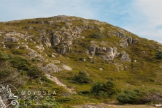 Stoney Hill 3