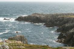 Rocky View 2